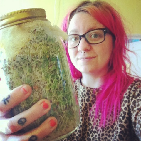 It may be too cold to grow things on the balcony, but it's not too cold to grow things in a jar!